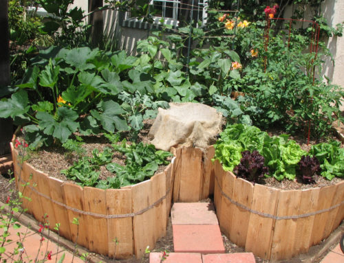 Build a Keyhole Garden