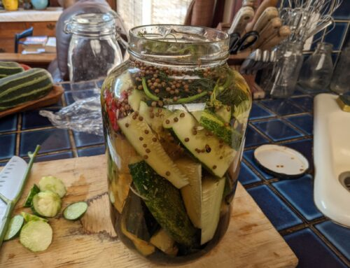 Summer Pickle Time